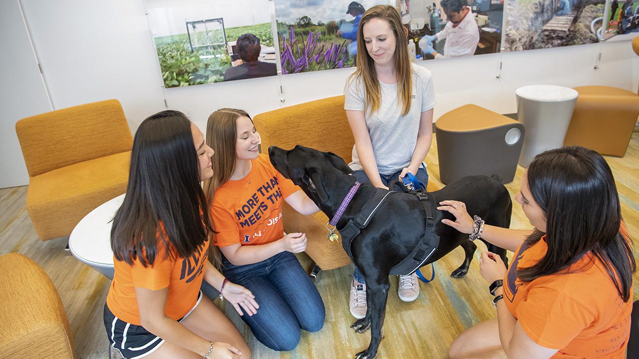 Group of students gathered around a black labrador dog.