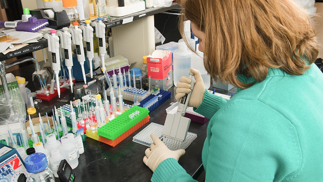 PhD student working with test tubes in laboratory.