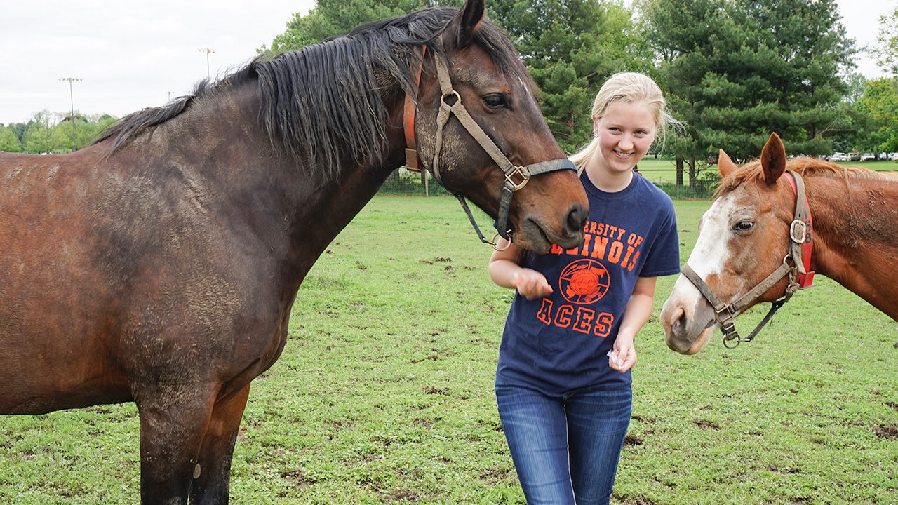 Student walks with two horses outside.