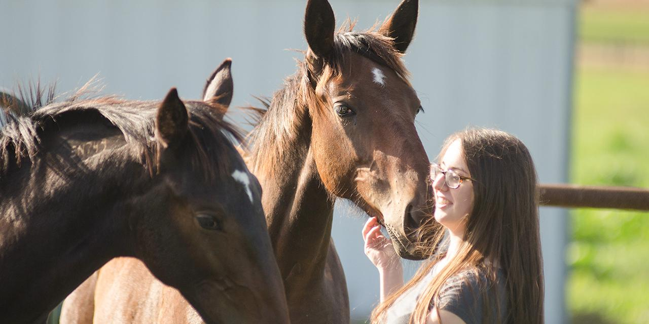 Girl grooming horses outside.
